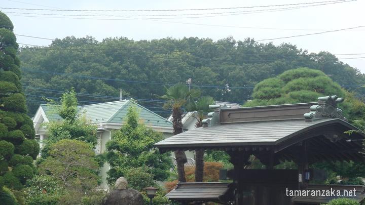観音寺跡緑地