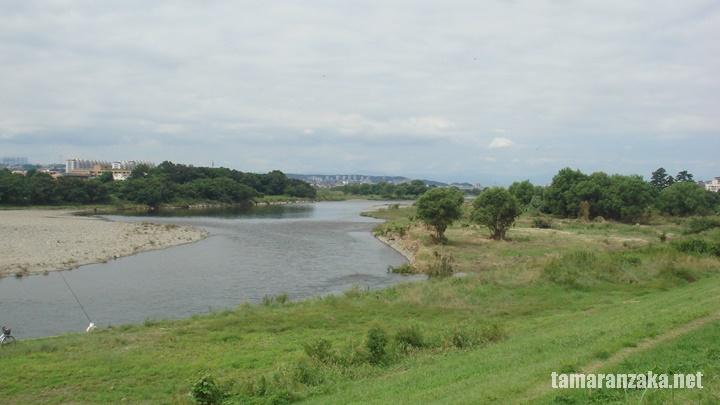 多摩川の眺め