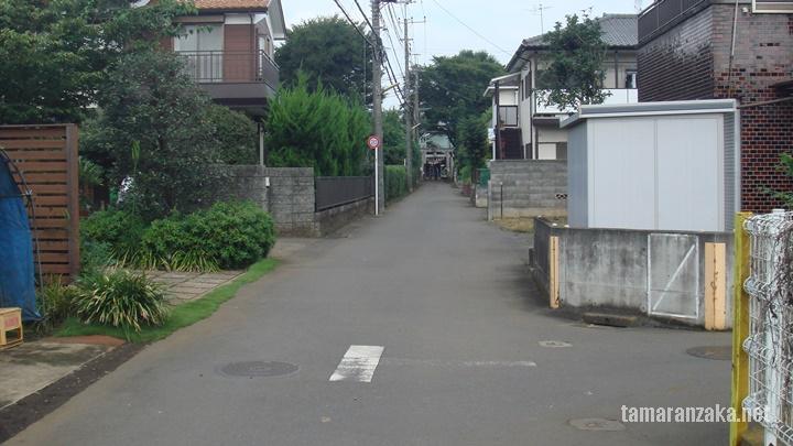 国分寺 内藤神社参道