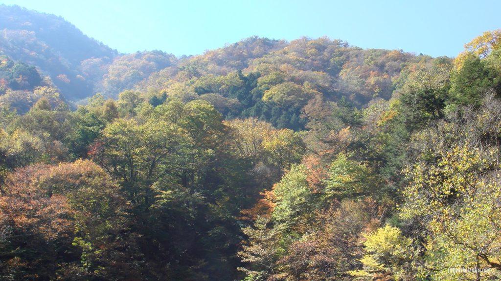 柳沢峠から塩山へ