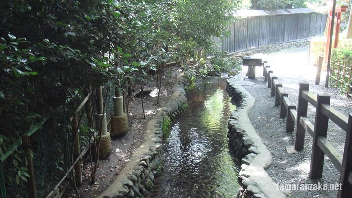 国分寺湧水群